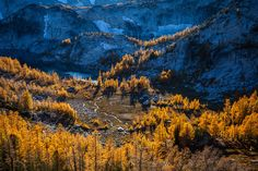 Gold In Them Hills by Bryan Swan / 500px Enchantment Lakes