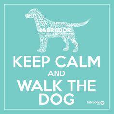 Labrador Retriever T-Shirts, Hoodies & Sunrise Lake, Black Labs, Dog Walking, Dog Treats, Dog Life, Beautiful Creatures, Keep Calm, Best Dogs, Fur Babies