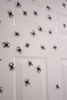 Magnetic Spiders for the door