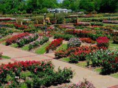 "Tyler, Texas - ""Rose Capital of the World"""