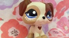 Lps coustom I want a custom like this so bad!!
