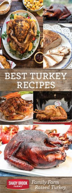 Best Turkey Recipes - Shady Brook Farms® turkey