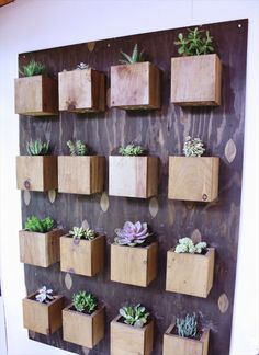 16 DIY Indoor #Gardens For Your Home | DIY to Make
