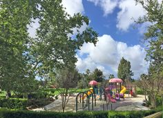 Marguerite M. O'Neill park in Mission Viejo. There is something special about this park. Maybe the oldest park in Mission Viejo. Mature trees, wonderful play space, seating, shade and field.