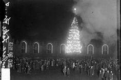 This year, Chicago celebrates the 100th anniversary of the Tree Lighting Ceremony. Taken in 1913, this photos depicts Chicago's first city tree, originally placed in Grant Park. Find out more about this year's tree lighting ceremony here: http://www.cityofchicago.org/city/en/depts/dca/supp_info/tree0.html