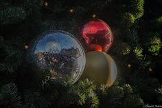 Reflet de Noël à LILLE