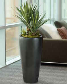 10 Enhancing Clever Tips: Artificial Flowers Quotes artificial grass on concrete.Artificial Plants Outdoor Home artificial flowers wreath.How To Arrange Artificial Flowers. Cheap Artificial Plants, Artificial Plant Wall, Artificial Succulents, Artificial Flowers, Succulent Plants, Planting Succulents, Planting Flowers, Indoor Succulents, Pot Plants