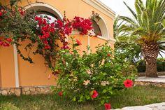 L'Hotel Libyssonis, di recente ristrutturazione, sorge nella immediata periferia dell'abitato di Porto Torres, appartato dal rumore del traffico urbano, in un'oasi di verde e di pace.