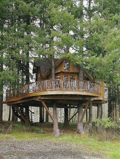 live in a tree house.or at least have a spare room in the tree house Cool Tree Houses, Tree House Designs, Curved Staircase, Spiral Staircases, Staircase Design, Cabin In The Woods, Cabins And Cottages, Log Cabins, Horse Farms