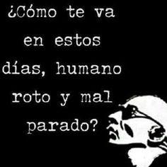 Roto y Mal Parado Rock Y Metal, Rock N, Princess, Quotes, Strange Words, Beautiful Words, Military Love, Quotations, Quote