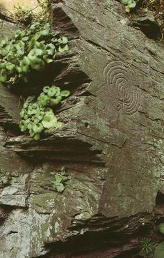 Eeyore's eye — xphaiea:     Prehistoric spiral carving, Cornwall,...