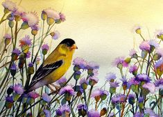 Gold Finch by Mary Gibbs Watercolor Flowers, Watercolor Paintings, Bird Paintings, Pastel, Bird Patterns, Backyard Birds, Bird Art, Beautiful Birds, Painting Inspiration