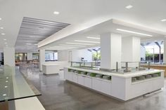 Corporate Cafeteria - Cupertino, CA, simple clean serving cafe, Armstrong linear ceiling, recessed lighting, white, polished concrete floors