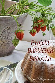 Unavená vařečka: Projekt Babiččina bábovka