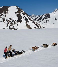 Another place to return.....Punch Bowl Glacier to go sledding with the dogs!