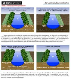 Agricultural Riparian Buffers http://content.ces.ncsu.edu/agricultural-riparian-buffers http://content.ces.ncsu.edu/riparian-buffers-and-controlled-drainage-to-reduce-agricultural-nonpoint-source-pollution.pdf