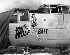 "Image detail for -25 ""Wolf Bait"" Nose Art"
