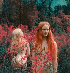 Shae Detar is a photographer/artist based in NY. Shae began painting on photos as a teenager in the Paint Photography, Vintage Photography, Wild Photography, People Photography, Fashion Photography, Tableaux Vivants, Make Love, Female Photographers, Vintage Colors