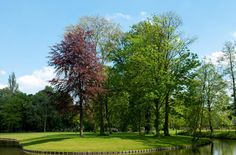 Park 't Hof valt op door zijn romantische en historische karakter: kronkelige paden, monumentale bomen, een mooi bloemencarré bij de ingang aan de Hoflaan en de dierenweide, die door bewoners beheerd wordt. Het Oranjepark heeft strak gebogen waterpartijen, slingerende verharde paden en ruime gazons. In het Oranjepark staat de skatebaan die in samenspraak met jongeren vormgegeven is en er is een speelplaats voor de nog jongere bezoeker.