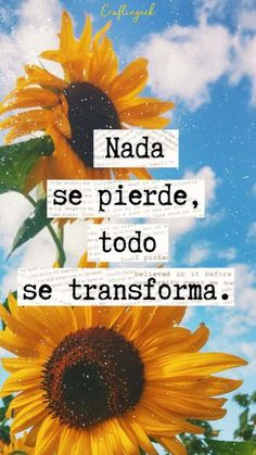 Nothing is lost, everything transforms 🌻🌻🌻 - Top-Trends Words Quotes, Wise Words, Love Quotes, Inspirational Quotes, Positive Phrases, Positive Quotes, Fun Words To Say, Postive Vibes, Quotes About Everything