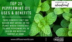 Top 25 Peppermint Oil Uses and Benefits Peppermint Oil Benefits, Peppermint Oil Uses, Peppermint Tea, Peppermint Patties, Medicine Cabinet, Aromatherapy, Diffuser, Essential Oils, Herbs