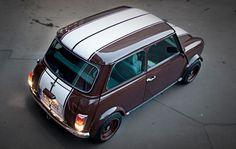 brown mini spi