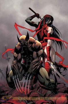 Wolverine & Elektraby Joe Madureira