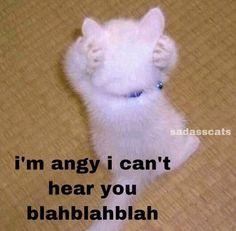 Funny Animal Jokes, Cartoon Jokes, Cute Funny Animals, Cute Baby Animals, Funny Cute, Funny Reaction Pictures, Funny Pictures, Cute Messages, Cute Texts