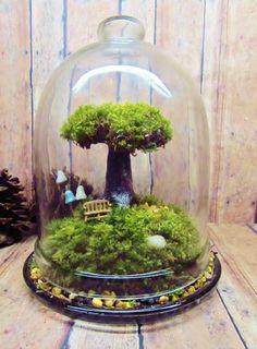 Tree of Life Terrarium Live Moss Fairy Garden Raku by GypsyRaku