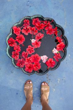 Beautiful photo taken at the Purity Hotel, in Kerala, India. Blossoms at her feet will make any woman feel like a goddess, and so will wearing #SwatiJrJewelry! #BeAGoddess www.swatijrjewelry.com