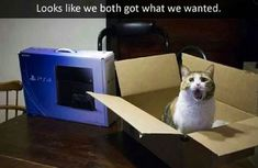 70 Funny Pictures For Today (#74)
