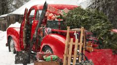 Red Vintage Pickup Truck with Christmas Tree, Snow Sled and Skis, Gifts and Snow on the Ground... How charming!