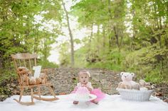Teddy Bear picnic cake smash in the woods ♡