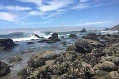 Pinnacle Gulch, Coastal Access Trail, 20600 Mockingbird Road, Bodega Bay