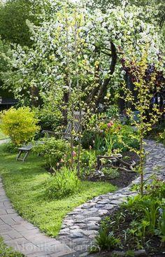 beautiful backyard garden design ideas can for your garden planning 2 - New ideas Small Gardens, Outdoor Gardens, Small Backyard Gardens, Small Backyards, Farm Gardens, Outdoor Rooms, Garden Cottage, Garden Living, Shade Garden