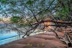Who has been to Molokai?  A lovely sunset on Molokai.  Hawaiian Islands.  Photo by @PanaViz ______________________________________