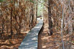 Delaware: James Farm Ecological Preserve Loop Trail
