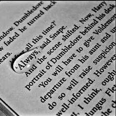 #dumbledore #harrypotteredit #ronweasley #goldentrio #myhome #severussnape #remuslupin #hermionegranger #siriusblack #gryffindor #ravenclaw #firstseptember #gobackhome #hogwartsexpress #ginnyweasley #tomriddle #dobby #fredandgeorgeweasley #bellatrixlestrange #ronweasly #ginnyweasly #lunalovegood #harry #ron #ginny #luna #draco #nevilelongbottom #neville #halfblood