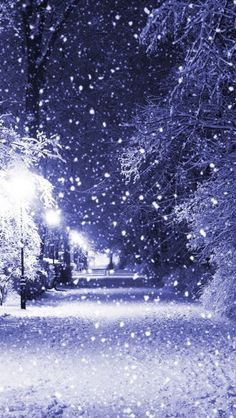 Winter Night iPhone 5s Wallpaper