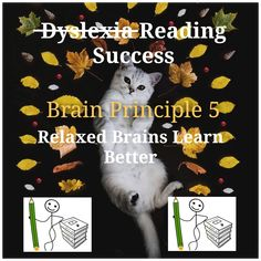 Dyslexia, Literacy and Learning English Spelling, Dyslexia, Literacy, How To Find Out, Learning, Words, Education, Teaching