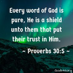 Every word of God is pure, He is a shield unto them that put their trust in Him. Proverbs 30:5