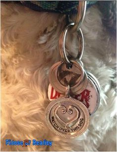 """It's time for Fidose Friday Finds! We love bling at Fidose of Reality. Dexter is sporting his """"Watch Over This Dog"""" charm from Harper & Hound. The matching human necklace says """"Watch Over This Woman"""". www.harperandhound.com"""