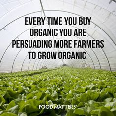 It's just one small thing that can contributing to a bigger difference!  www.foodmatters.tv #foodmatters #FMquotes