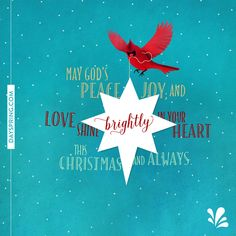 99 best christmas cards ecards images on pinterest christmas new ecards to share gods love share a friendship ecard today dayspring offers free ecards featuring meaningful messages and inspiring scriptures m4hsunfo