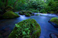 Photograph Blue Stream at Dawn by Hiroshi Shirasaki on 500px