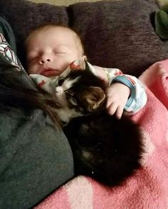 Orphaned Kitten Guards Her Little Brother Since Day One, Now 10 Months Later..