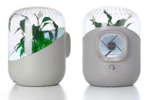 The device relies on plant's natural phytoremediation capabilities to remove volatile organic compounds (VOCs) from the air. Simply place any houseplant inside the container and the integrated, specially designed fan draws in ambient air toxins and circulates them around the plant's leaves and roots, which absorb and metabolize the toxins. http://www.robaid.com/bionics/andrea-an-air-purifier-which-uses-indoor-plants-to-filter-air.htm