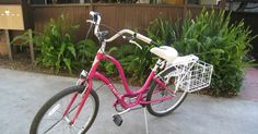 Above is my brand spanking new and very sexy Townie Bike/Cruiser.  It's not only a beauty, but it's incredibly practical and useful.  I'm ...