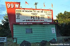 Taking our Dog to the Drive-in Theater ~ Tenacious Little Terrier