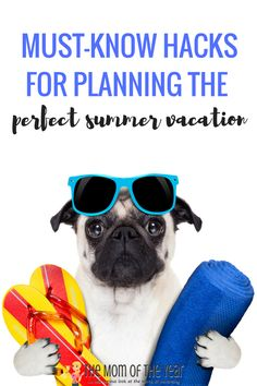 Looking to plan the perfect summer vacation? Grab these smart, must-know trips and planiing hacks and a fantastic family vacation is in the bag! Plus, make sure to check out the money-saving hacks to keep your trip budget-friendly! Best Vacation Spots, Best Vacations, Vacation Ideas, Top Travel Destinations, Budget Travel, Travel Tips, Road Trip Hacks, Summer Activities For Kids, Best Budget